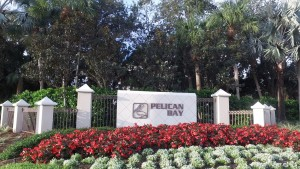 Pelican Bay Naples Florida Homes For Sale